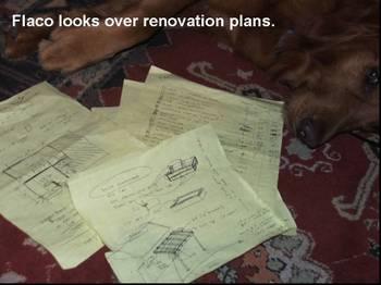 Flaco_renovation